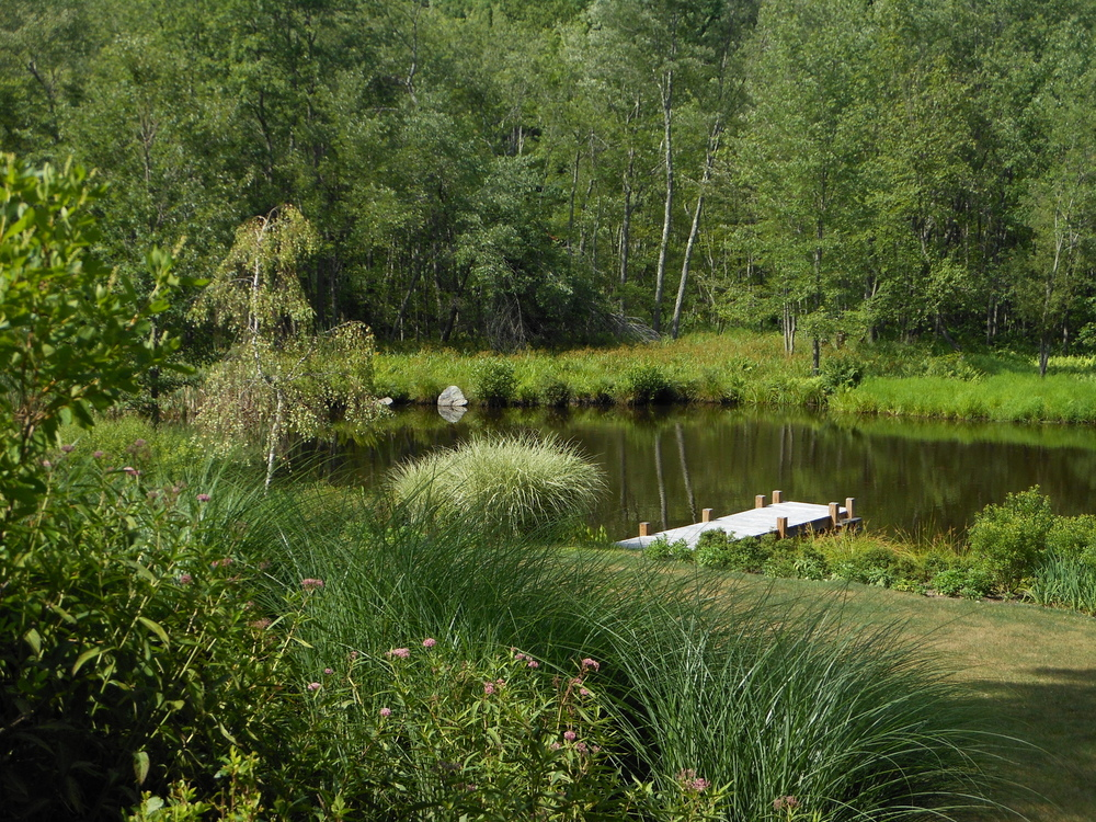 bkla studio - view of the pond from the house