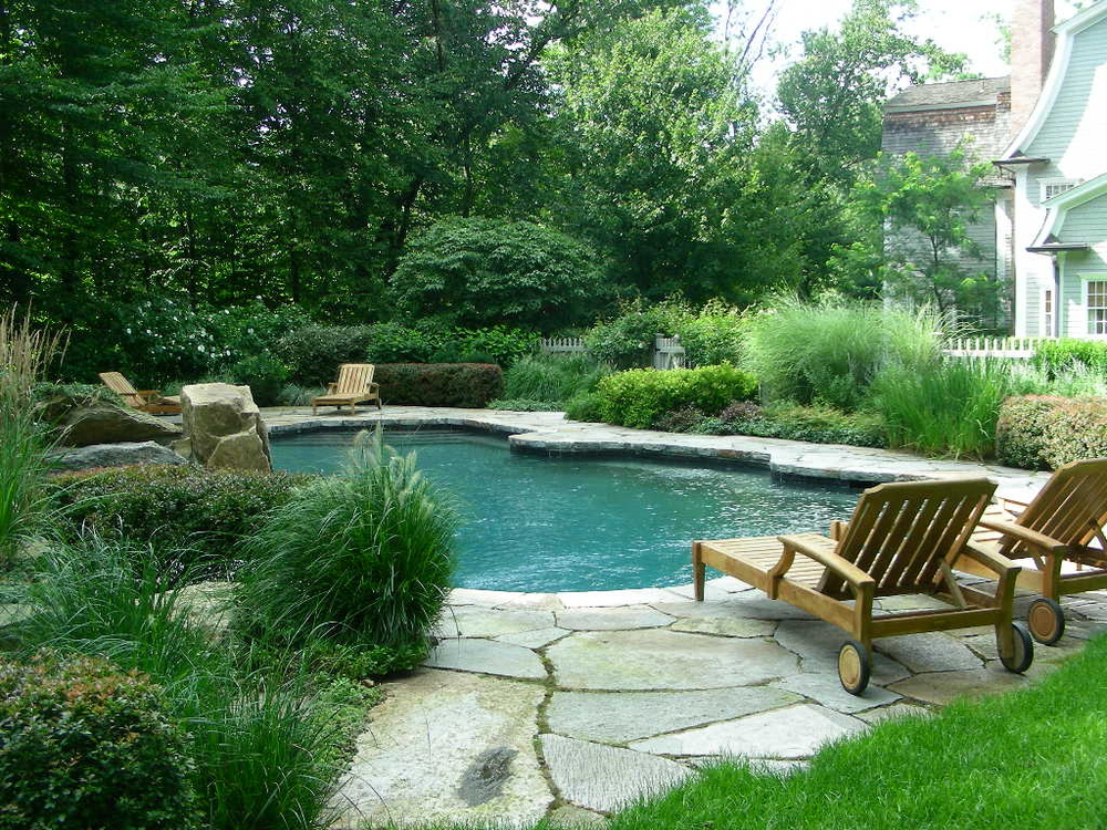 bkla studio - natural form swimming pool