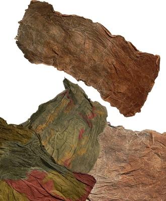 Erica Chronowski - Landscapes
