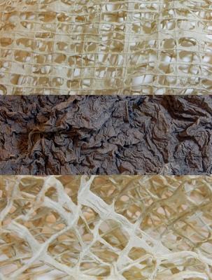 Erica Chronowski - Textured Paper