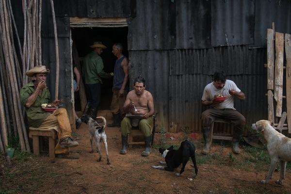 Alexis Aubin - Lors de la récolte du tabac, les paysans saident mutuellement.