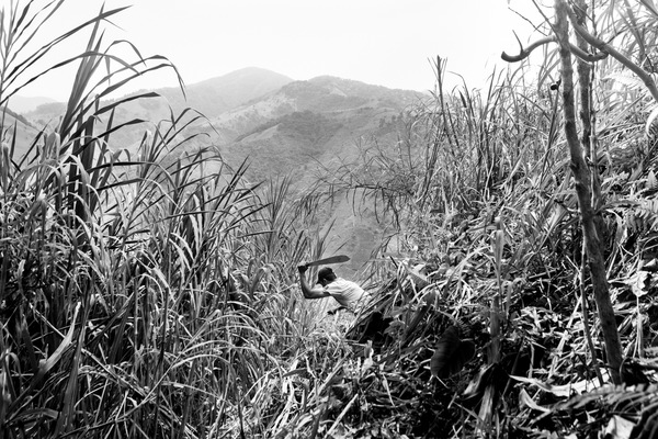 Alexis Aubin - Andres from the Colombian Campaign to Ban Landmine cuts grass before closing the access to a contaminated area. He used to be part of the FARC-EP and made more then 1000 explosives for the rebel organization before starting a new life as a humanitarian landmine remover. Algeciras, Huila Colombia - April 7th 2017