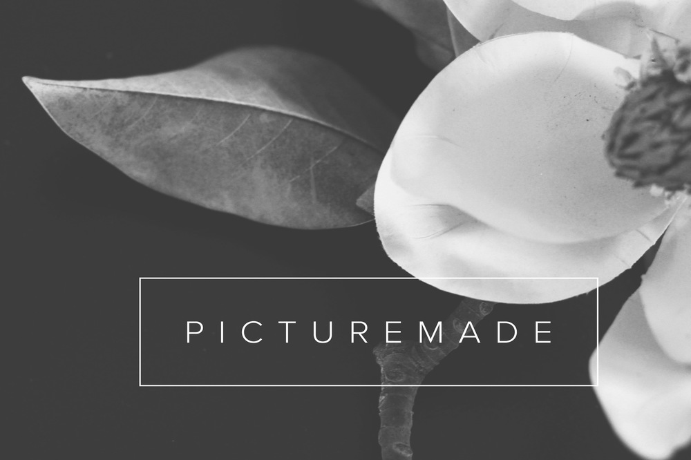 PictureMade Photography -