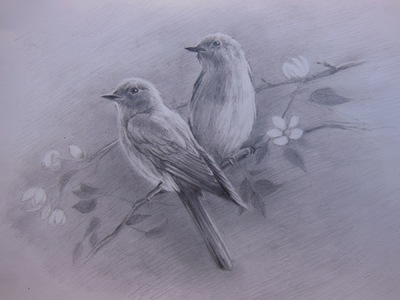 LoPresti Arts - Birds, 2013