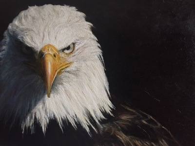 LoPresti Arts - Eagle, 2015