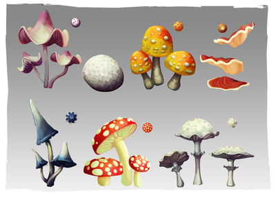 Lauren Cason - Mushroom Interaction Concept, Photoshop