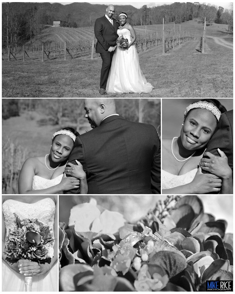 Wedding Photography - North Carolina - Asheville wedding, elopement, Asheville elopement, elope Asheville, Addison farms and vineyards, Erika and tom, mike rice photography