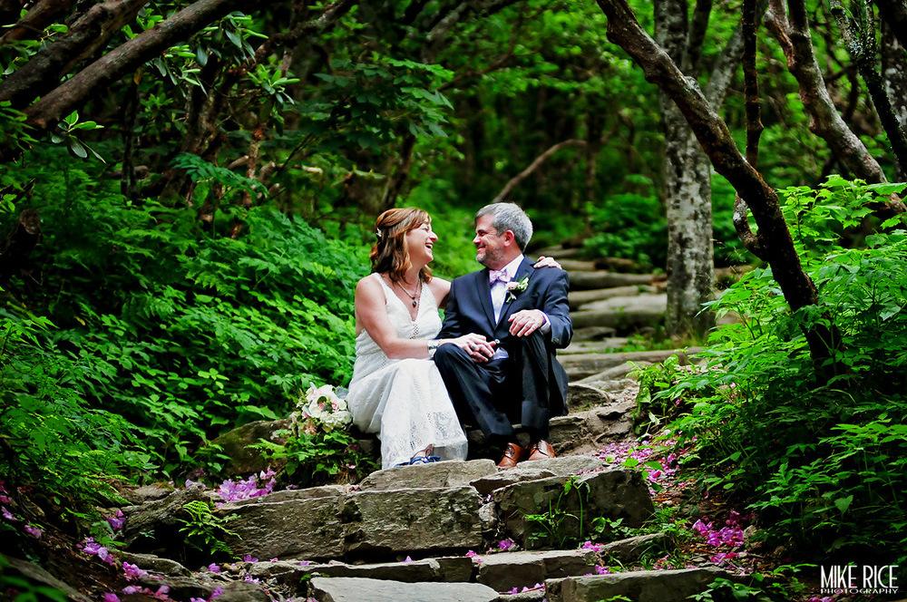 Wedding Photography - North Carolina - Craggy Gardens Wedding Photography