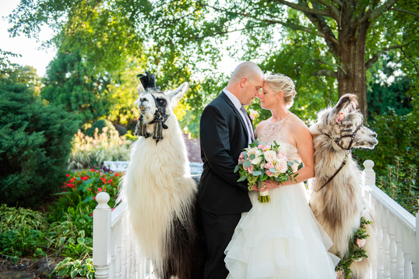 Amryn Soldier: Weddings, Elopements, and Portrait Photographer - Carl House