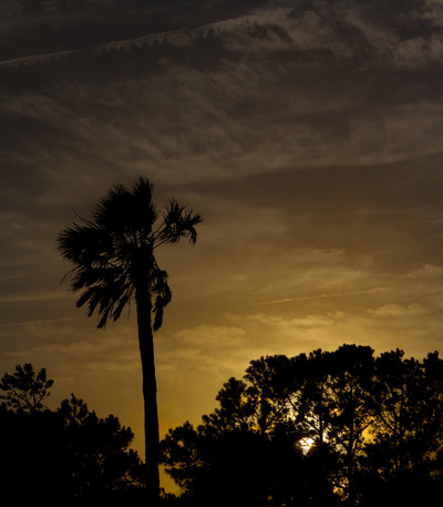 Sean Pinto photoGRAPHY - Charleston sunset/Beach