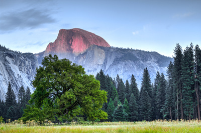 Sean Pinto photoGRAPHY - Half Dome (HDR) at Yosemite National Park