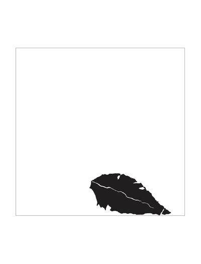 The Other Side of Perfect - Illustrator Graphic, Black and White Leaf Graphic, 2015