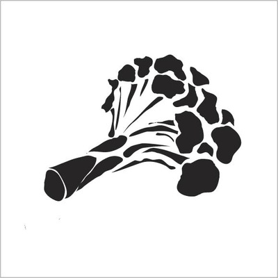 The Other Side of Perfect - Illustrator Graphic,Black and White Broccoli Graphic, 2015
