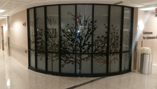 AlphaGraphics Franklin - Frost glass window application