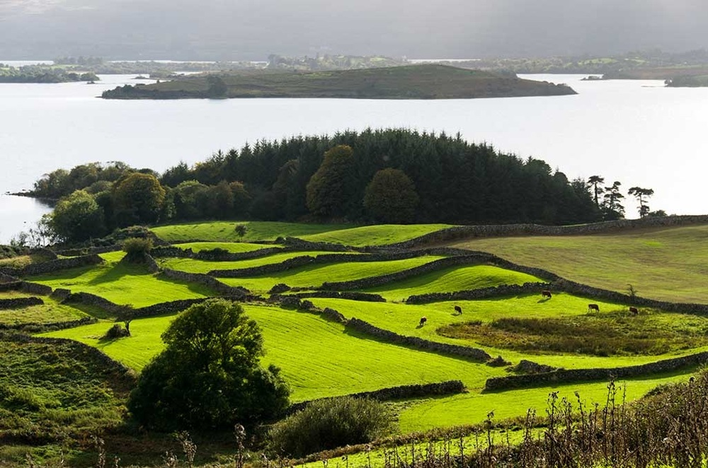 Pip Shepley - 1/4 acre fields, from Carragh, overlooking Lough Corrib