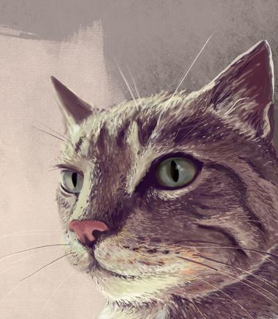 neu illustration -