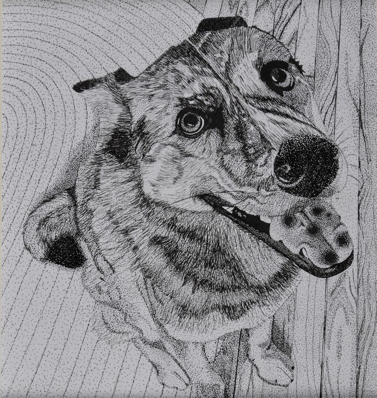 My Artwork - Echo. Pen and ink. 8.5 x 8.