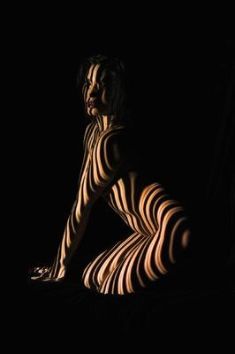 RADU JUSTER VISUAL ARTIST - Zebra woman