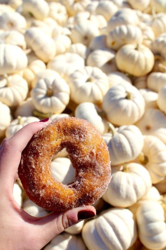 Barrie Schneiderman - Cinnamon Sugar Apple Cider Donut, Harvest Moon Farm, North Salem, NY
