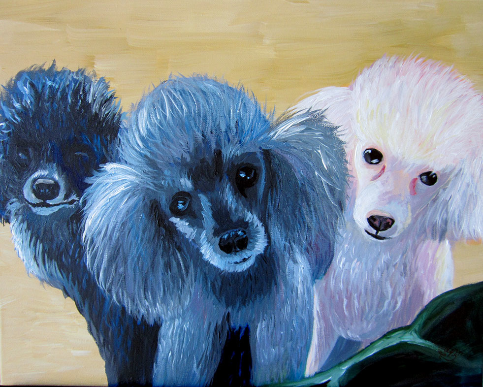 An Assortment of Daydreams - Mini Poodle Pack