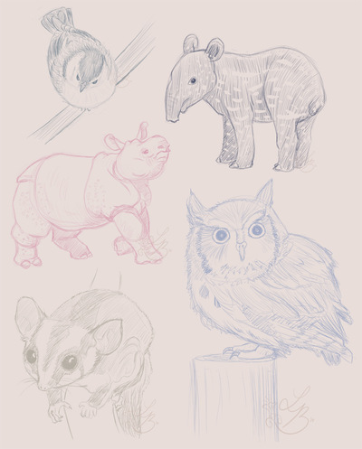 An Assortment of Daydreams - Animal Sketches 1