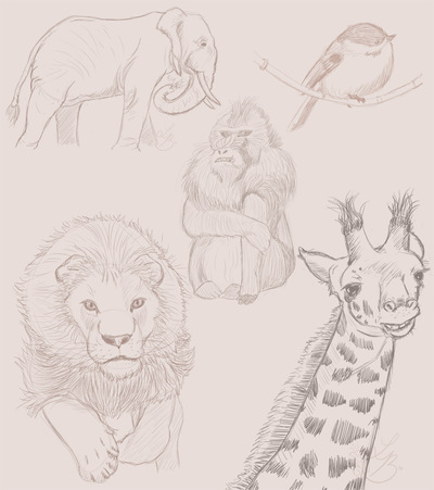 An Assortment of Daydreams - Animal Sketches 2