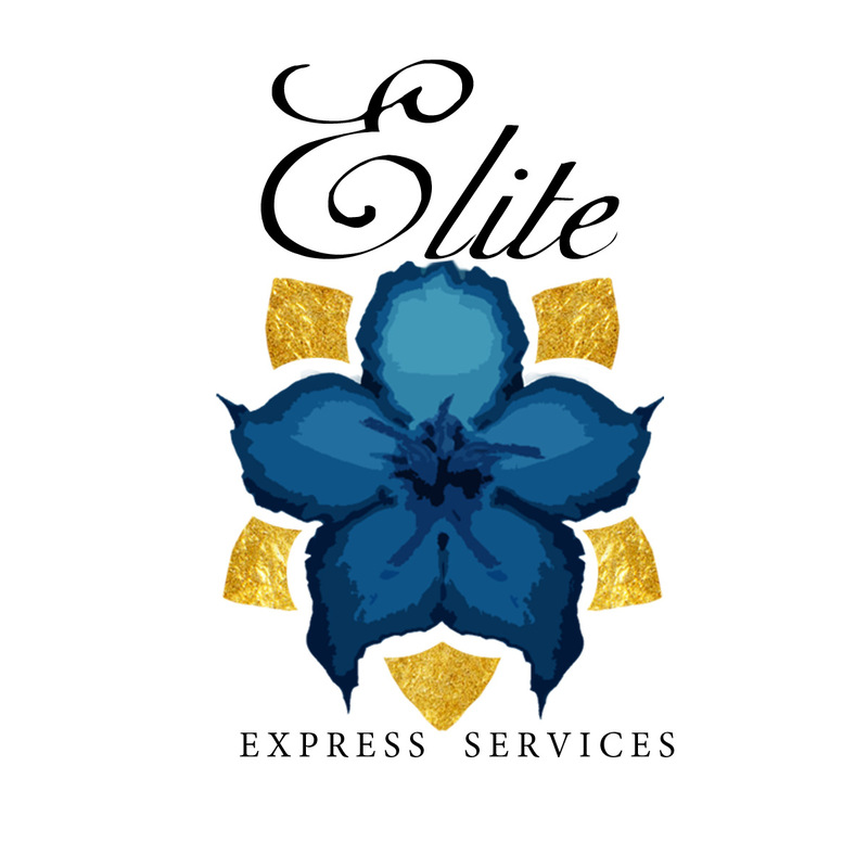 Paul Louise-Julie Portfolio - Elite Services Logo