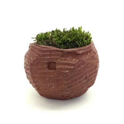 Art by Sean Evans - Terra Cotta Succulent Bowls
