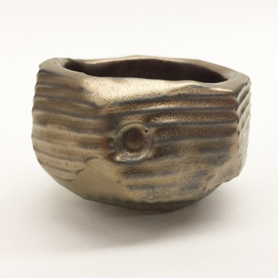 Art by Sean Evans - Bronze Succulent Bowl