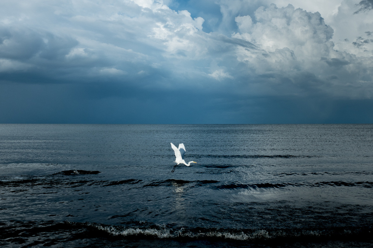 Adrienne Surprenant - La lac Cocibolca est la plus grande source deau douce en Amérique Latine. Il était surnommé à lépoque de la colonisation la mer deau douce.