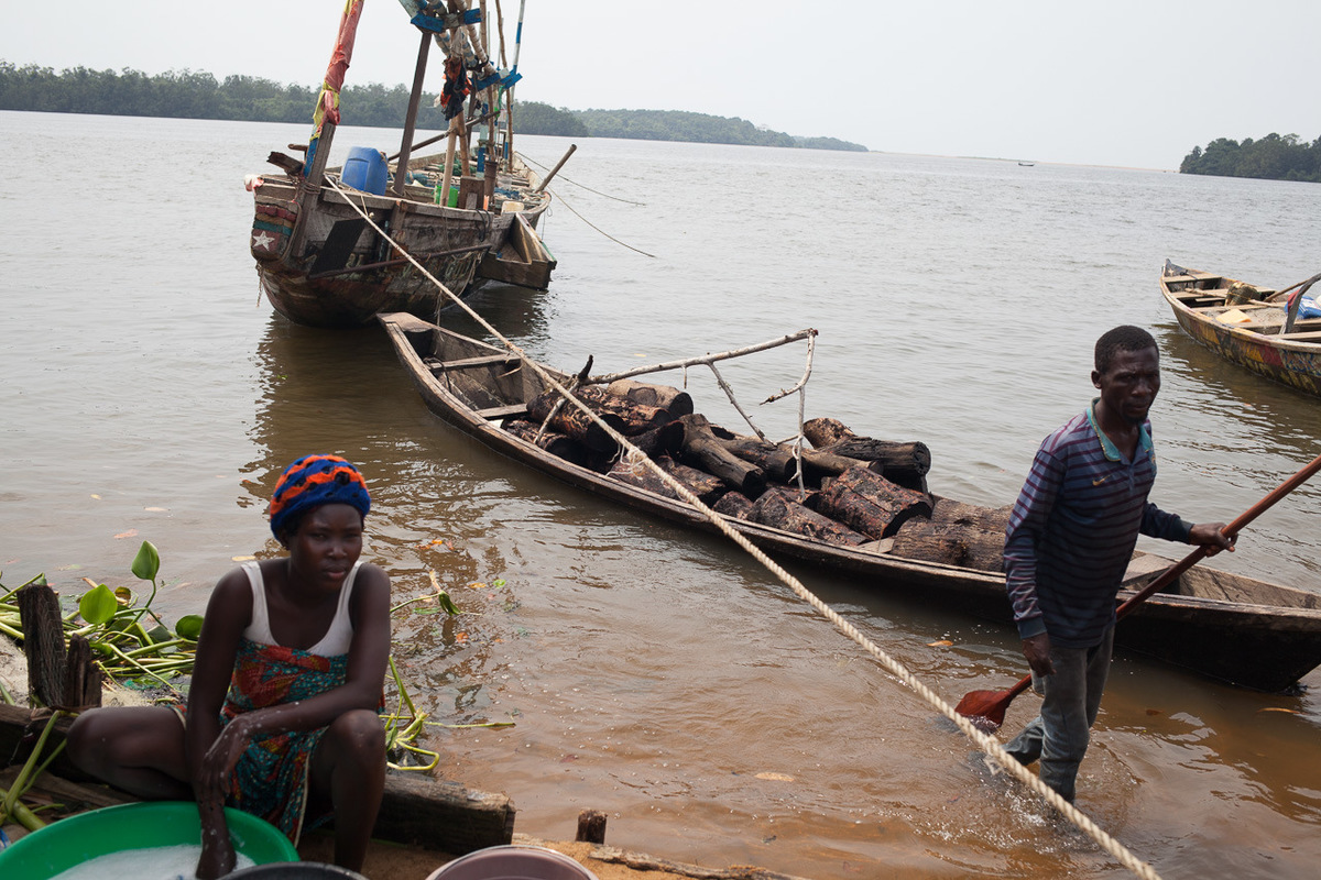 Adrienne Surprenant - In Ebokombo, a man and a women arrive with a dugout boat full of red mangrove wood, that they call Caltal, and use to smoke the fish. The Mangroves around the West African fisherman camps being cutout by this activity.