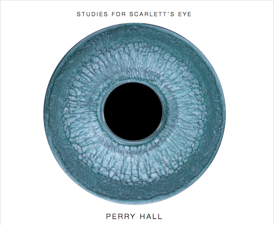 PERRY HALL STUDIO - STUDIES FOR SCARLETTS EYE Painting films created by artist Perry Hall for actress Scarlett Johanssons eyes in the motion picture Lucy, directed by Luc Besson. 2014. 54 pages, 43 images. Printed on ProPhoto Lustre-Finish White paper. 10 x 8 inches (Landscape). Softcover and high quality PDF download. To Purchase and book preview: http://www.blurb.com/b/7833679-studies-for-scarlett-s-eye