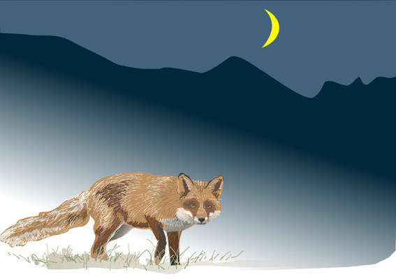 Printmaking, Poems & Projects - A Fox Jumped Up One Winters Night - Prices vary by size 8.5 inches x 11 quoted