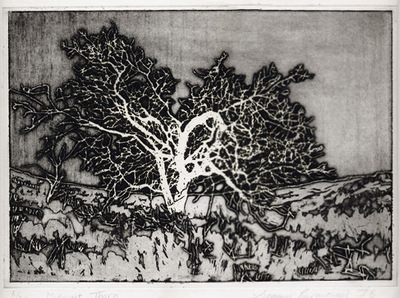 Printmaking, Poems & Projects - Midnight Thorn - Monochrome etching