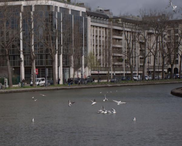 Damon Lum Photography - The Birds, Canal St-Martin, Paris