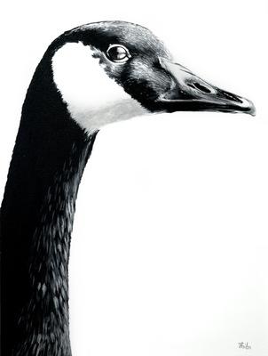 robert thibault - Bernache 92 cm x 122 cm