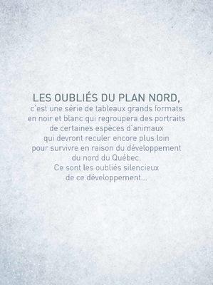 robert thibault -