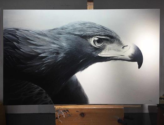 robert thibault - Aigle 160 cm x 90 cm