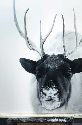 robert thibault - Caribou forestier 92 cm x 122 cm