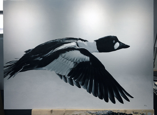 robert thibault - Garrot dIslande 122cm x 92 cm