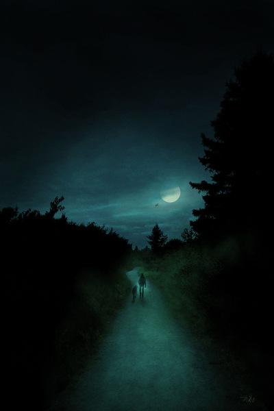 robert thibault - Lhomme qui marchait dans le parc du Bic