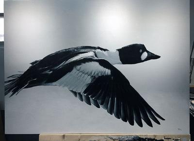 robert thibault - Garrot dIslande 48 po x 36 po