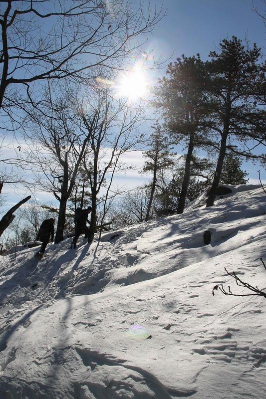 Rachel Leeson - Winter in Middlesex Fells, just north of Boston