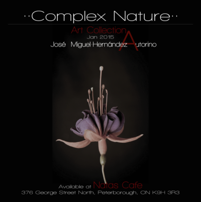 Design&Art - Complex Nature