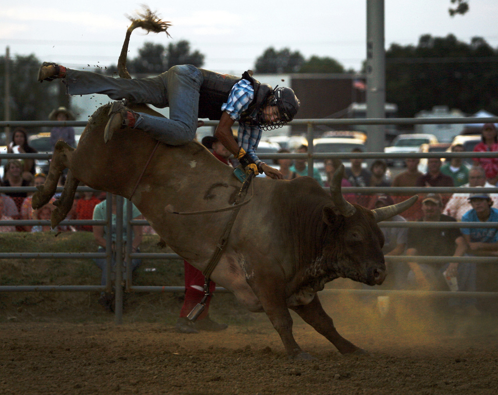 "Jennifer Gonzalez | Multimedia Photojournalist - Dakota Mayberry, of Hutton Valley, MO, attempts to keep a grip as he is bucked off of a bull at the Du Quoin State Fair. Mayberry, who has been bull riding since he was eight-years-old, ended the night with a total of 89.5 pts. ""It's always nerve-wrecking before a ride - no matter how long you've been doing it,"" Mayberry said. ""You've just got to pray and hope you have a good ride."""