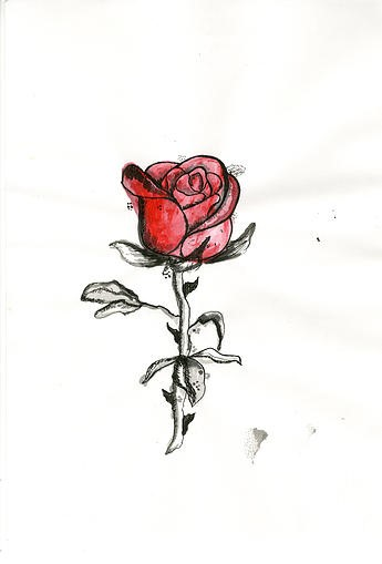 Valentina Rodriguez Castillo - Dibujo - Find Creatives