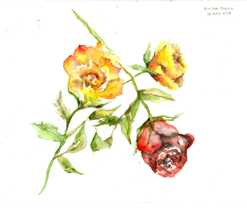 Richa Date - colored roses