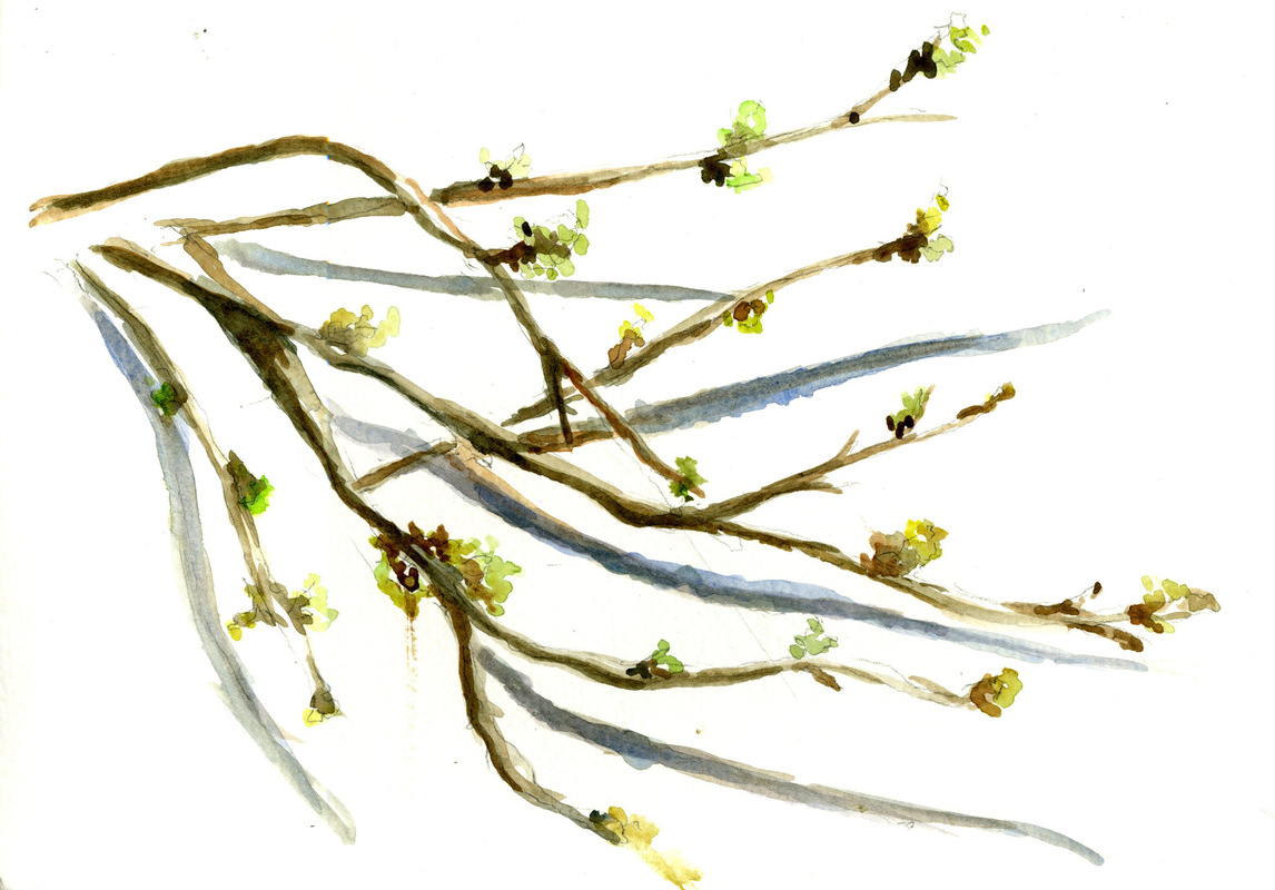 Richa Date - branches