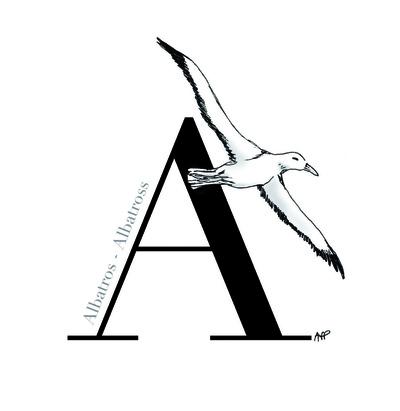 Anne Frédérique Préaux - Alphabet (2013)
