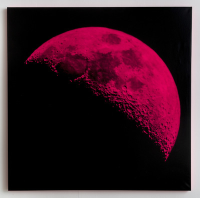 Andy Gershon - 35% Illumination 9/26/17 (Pink/Black) SIlkscreen on Canvas